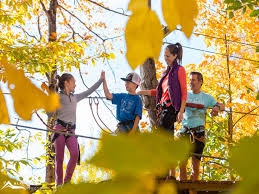 Image result for acro nature morin heights